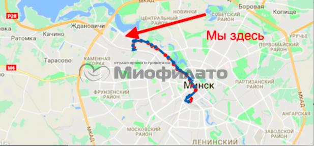 Как найти Миофилато